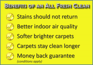 Benefits of an All Fresh Carpet Clean