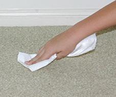 Step 5: Blot Dry