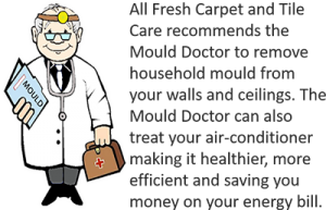 Mould Doctor Ad