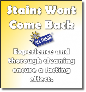 Stains Wont Come Back - Esperience and thorough cleaning ensure a lasting effect.